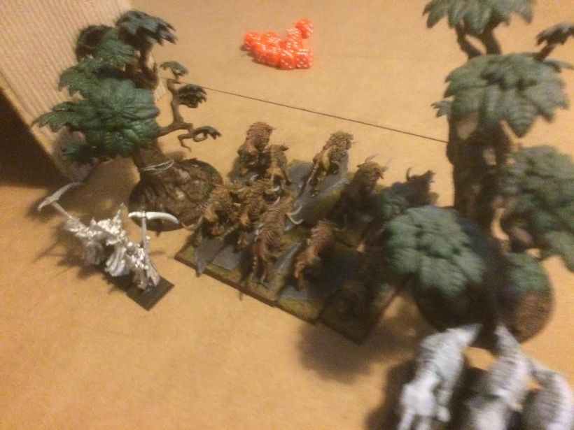 Slavering greedily, the Skin Wolves and Chaos hounds advance